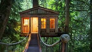 Lovely Tree House Wallpaper