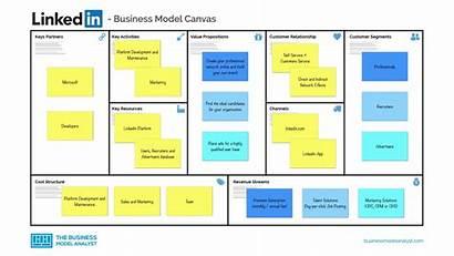 Business Linkedin Canvas Professional Network