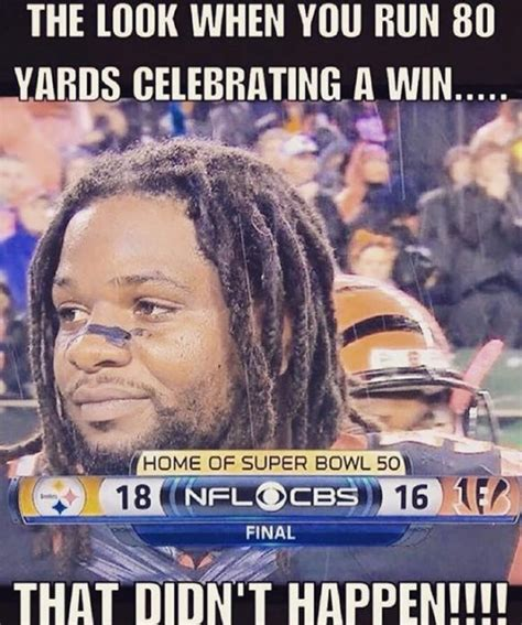 Bengals Memes - afcn hate guide page 7 sportshoopla sports forums