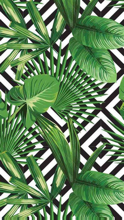 Black White And Green by Palms Diamonds Print Aloha Summer Vinyl