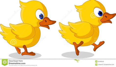 Image result for pic of two ducks