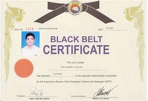 karate black belt certificate templates 28 images With karate black belt certificate templates