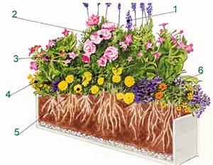 Blumen Für Fensterbank : bunter sommerlicher blumenkasten in regenbogenfarben balkon pinterest garten k stchen und ~ Markanthonyermac.com Haus und Dekorationen
