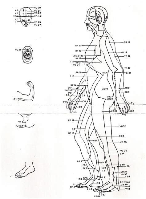 meridien du corps humain 4 les m 233 ridiens d 233 nergie