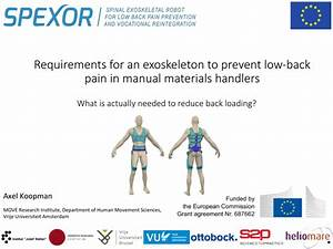 Pdf  Requirements For An Exoskeleton To Prevent Low