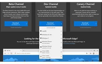 Microsoft Edge screenshot #2