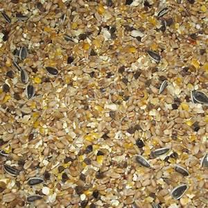 Graines De Tournesol Pour Oiseaux : graines oiseaux du ciel promotion hiver ~ Farleysfitness.com Idées de Décoration