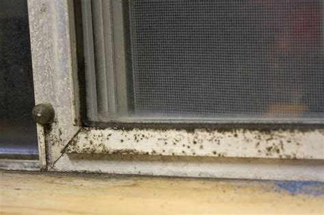 Hometalk   How to Clean and Restore Aluminum Window Frames