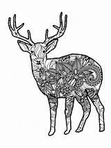 Coloring Deer Zentangle Adults Adult Mycoloring Printable Favorite sketch template