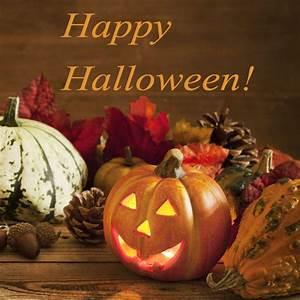 Lustige Halloween Sprüche : halloween spr che mit grusel s igkeiten garantie ~ Frokenaadalensverden.com Haus und Dekorationen