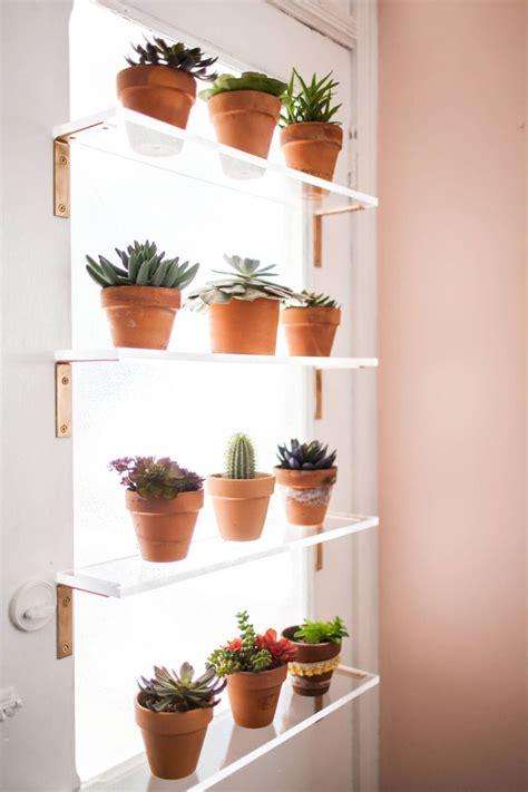 plant shelves  window wicked wall shelves