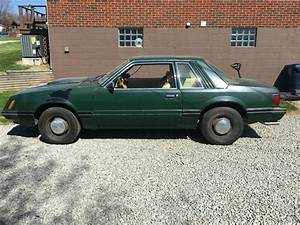First Year Cop Package: 1982 Ford Mustang SSP 5.0/4-Speed (With images) | Ford mustang, Mustang ...