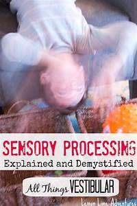 Vestibular Input  Sensory Processing Explained
