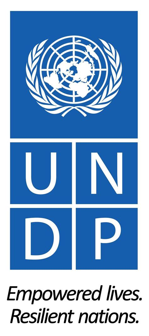 united nations development programme undp acted