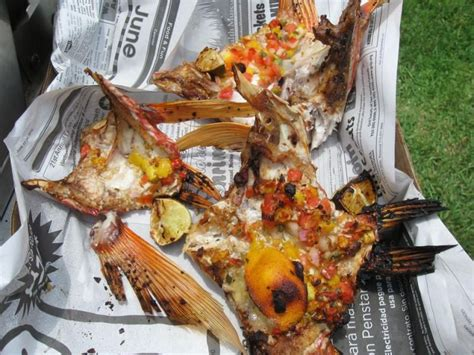 throats snapper fried thehulltruth grouper gulf recipes too seafood entrees em