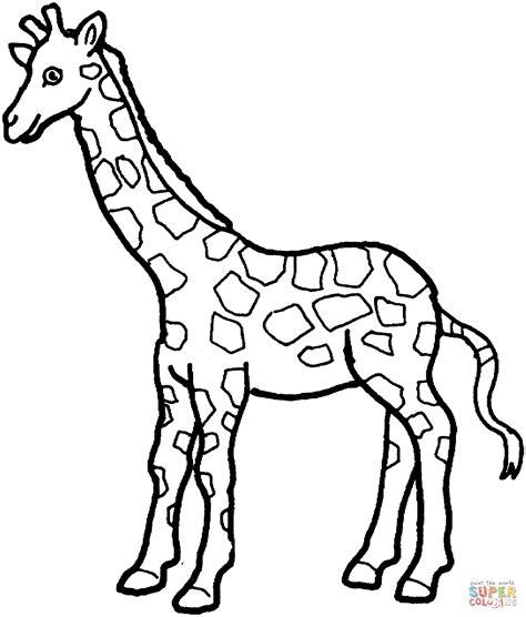 ausmalbild giraffe  ausmalbilder kostenlos zum ausdrucken