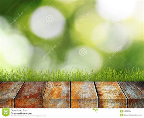natural outdoor background royalty  stock photo