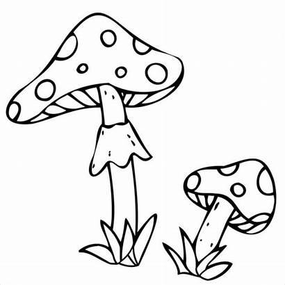 Jamur Vektor Amanita Mushrooms Decorative Elemen Halloween