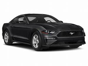 2019 Ford Mustang BULLITT : Price, Specs & Review   Chartrand Ford (Canada)