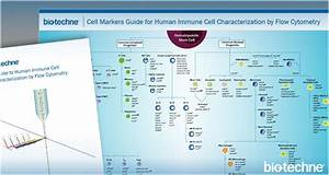 Immunology Resources