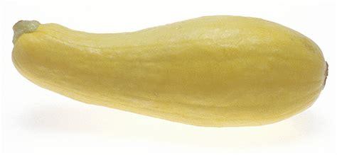 yellow squash 2 - /food/vegetables/squash/yellow_squash_2 ...