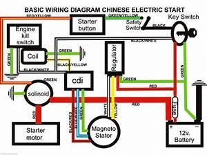 Honda Pit Bike Wiring Diagram 41363 Enotecaombrerosse It
