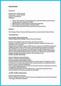 Simple Cv Form Writing A Clear Auto Sales Resume