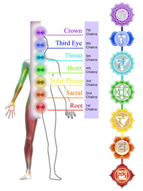 chakra colors in order understand the 7 chakra colors and what they
