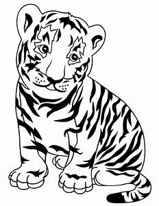 Baby Tiger Cub Coloring Page H U0026 M Coloring Pages