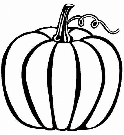 Pumpkin Printable Outline Coloring Pages Clipart Pumpkins