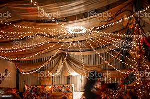 Fairy, Lights, At, A, Party, Stock, Photo, -, Download, Image, Now