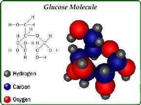 high blood sugar   pee diabetestalknet
