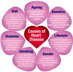 ... heart disease hypertensive heart disease rheumatic heart disease and Heart Diseases