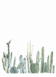 we love cacti | Tumblr