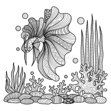 fighting fish drawing  coloring book stock vector