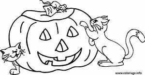Citrouille D Halloween Dessin : coloriage une souris une citrouille et deux chats ~ Nature-et-papiers.com Idées de Décoration