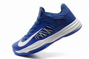 Nike Basketball Shoes LeBron James Olympic Version Blue ...