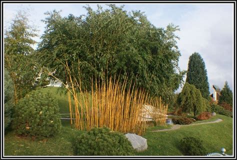 Garten Und Landschaftsbau Taunusstein schmidt garten und landschaftsbau taunusstein