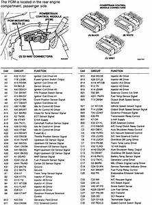 1995 Dodge Dakota Fuel Pump Wiring Diagram
