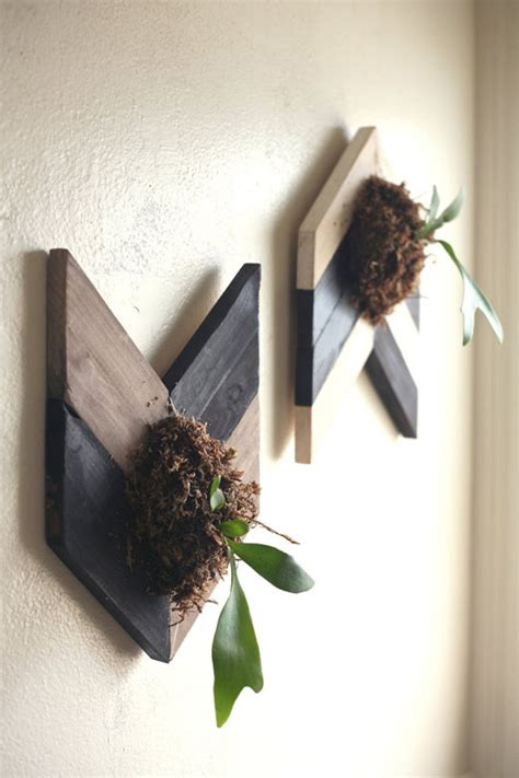 20 Fresh And Natural Decorations With Staghorn Fern