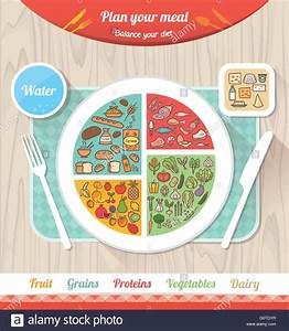 Plan Your Meal Infographic With Dish  Chart And Icons