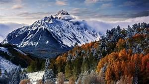 Wallpaper, Sneffels, Mountain, Trees, Winter, Forest, 4k