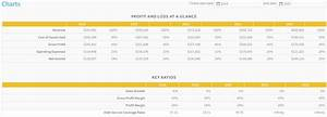Financial Projections Example Financial Projection Template For A Subway Franchise