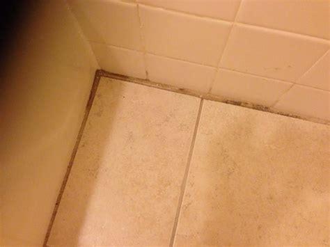 Hair On Bathroom Floor  Picture Of Sandcastle Resort At