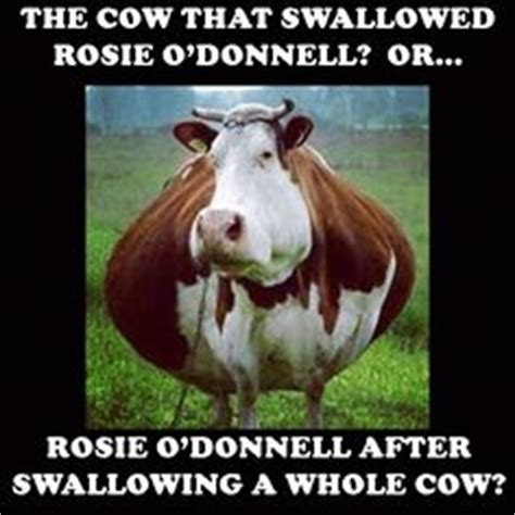 Rosie O Donnell Memes - pinterest the world s catalog of ideas