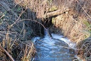 Abfluss Gluckert Wasser Kommt Hoch : weidebrunnen tr nke f r pferde wie bekommen wir das wasser hoch benutzer helfen ~ Buech-reservation.com Haus und Dekorationen