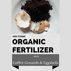 How To Make Organic Fertilizer From Coffee Grounds And Eggshells 101gardentipscom