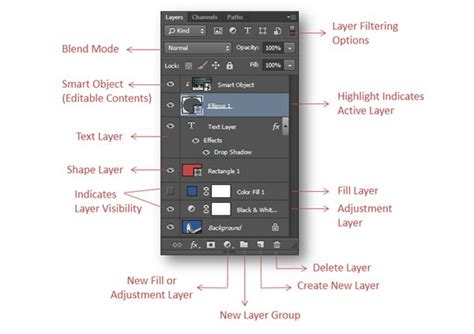 Layer Basics And Types Of Layers In Photoshop Cs6