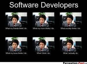 Software Developer What I Do