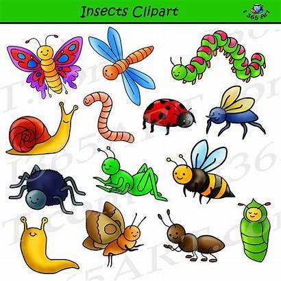 Insects Clipart Insect Bug Graphics Commercial Insectos